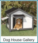 dog house gallery