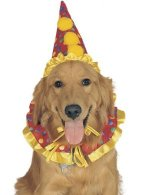 halloween dog costumes, clown hat and neck ruffle