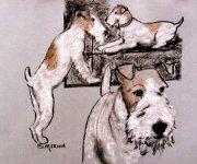 wire fox terries artwork