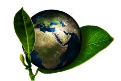 earth friendly icon image