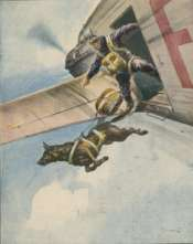 a Finnish parachutist jumps with his dog from vintage plane.
