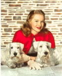 woman with sealyham dogs