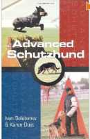 belgian malinois dog - schutzhund training