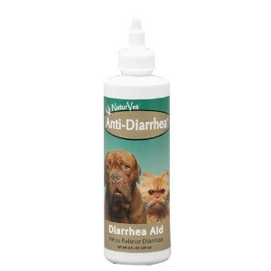 dog stomach problems - diarrhea