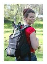small dog carriers - backpack dog carrier