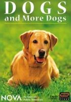 nova dogs and more dogs dvd image