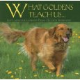 golden retriever dog life lessons book