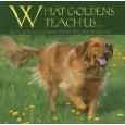 golden retriever dog life lessons book