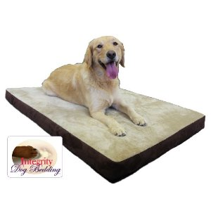 orthopedic memory foam dog bed image