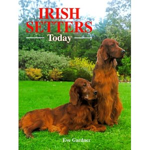 irish setter dogs - owner guide