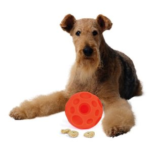 treat ball dog toy