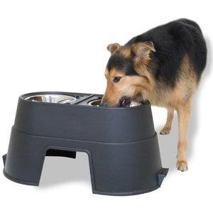 Premium Dog Insurance
