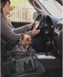 small dog car carrier seat