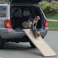 pet ramps and doggie steps