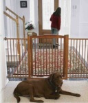 Richell one touch extra wide tension mount pet gate