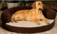 Ortho 42-Inch Sleeper Bolster Pet Bed