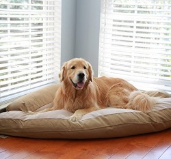 image of a caddis dog bed for corners