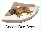 caddis dog beds