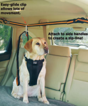 dog seat belts zip line