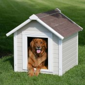 unique dog houses gallery - durable wood doghouse