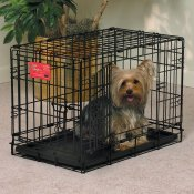 midwest double door dog crate