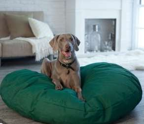 waterproof dog pillow bed