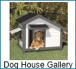 gallery of unique dog houses