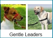 gentle leaders and harnesses for dogs