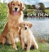 Golden Retrievers 2016 Wall Calendar