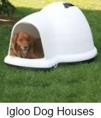 igloo dog houses