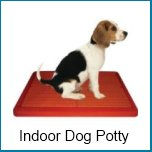 indoor dog potty