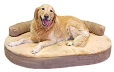 picture of orthopedic bolster dog bed