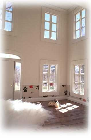 Inside Colonial Style Custom Made Dog House