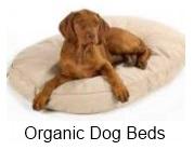 organic dog beds