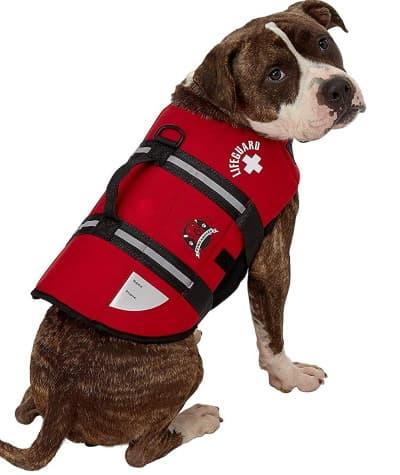 life vest for dog
