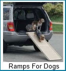 ramps for dogs