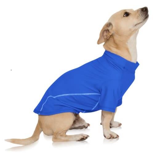 sun protective dog shirt
