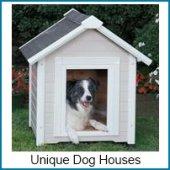 unique dog houses