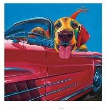 Dog About Town Poster Print