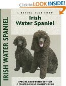 irish water spaniel breed guide