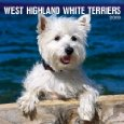 west highland white terriers calendar