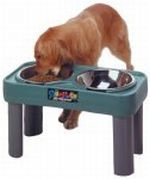 big dog raised bowl