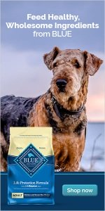blue buffalo life protection natural adult dog food