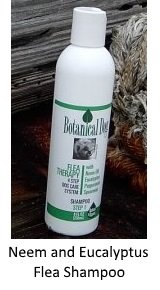 botanical flea shampoo