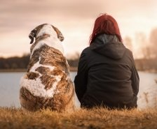 dog sitting with woman in nature