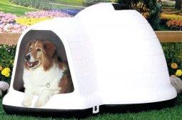 large indigo igloo dog house