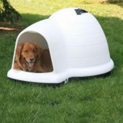 indigo igloo dog house medium size