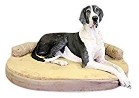 image of X-Large Memory Foam Orthopedic Dog Bed with bolster