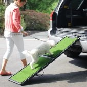 indoor-outdoor pet ramp