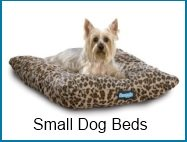 small dog beds